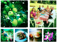 Summer Family Gathering with Blackberry Apple Crisp