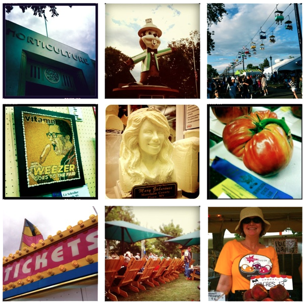 Minnesota State Fair 2011