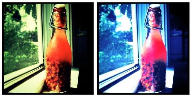 Sour Cherry Pit Vodka