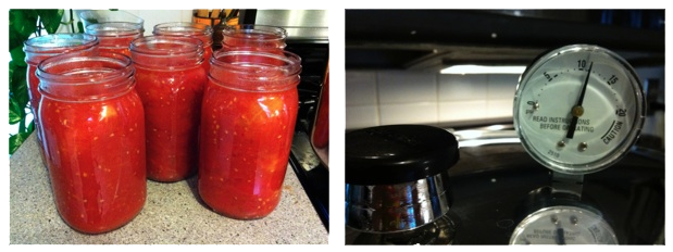 Pressure Canned Tomatoes