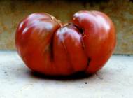 Heirloom Beefsteak Tomato